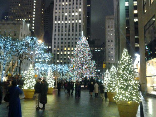 Xmas Tree Free Domain Photo Manhattan New York Xmas Rockofeller Plaza Center